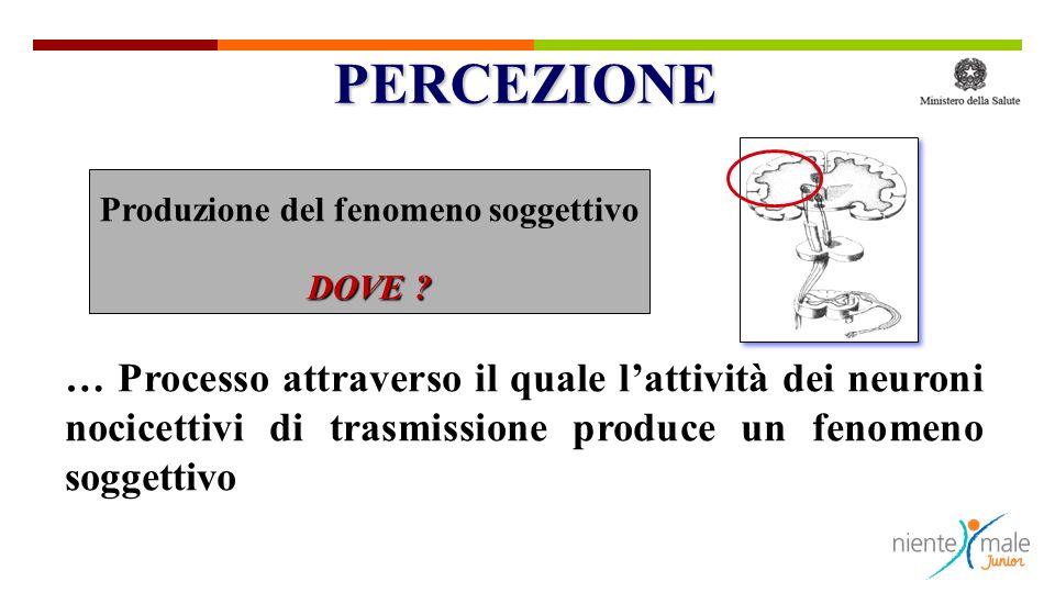 … Processo attraverso il quale lattività dei neuroni nocicettivi di trasmissione produce un fenomeno soggettivo Produzione del fenomeno soggettivo DOVE .