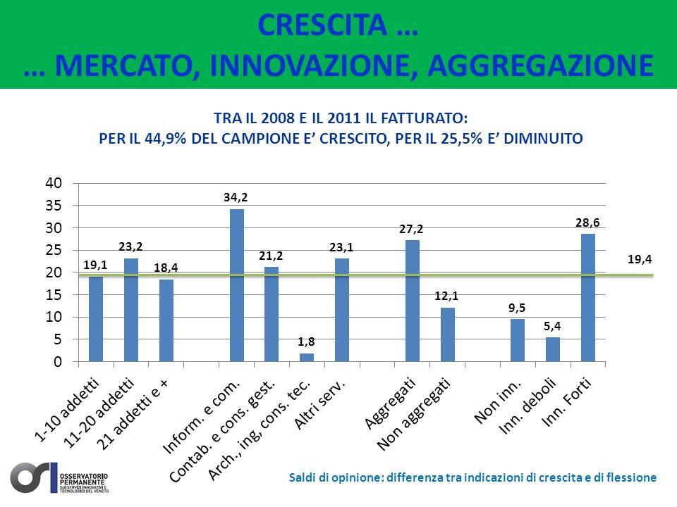 CRESCITA … … MERCATO, INNOVAZIONE, AGGREGAZIONE TRA IL 2008 E IL 2011 IL FATTURATO: PER IL 44,9% DEL CAMPIONE E CRESCITO, PER IL 25,5% E DIMINUITO 19,