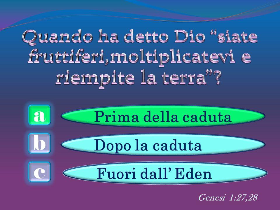 a c b Prima della caduta Dopo la caduta Fuori dall Eden Genesi 1:27,28