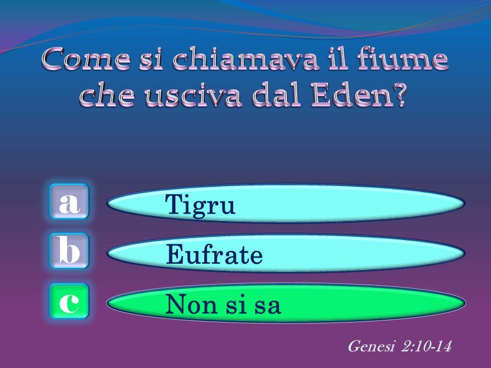 a c b Tigru Eufrate Non si sa Genesi 2:10-14