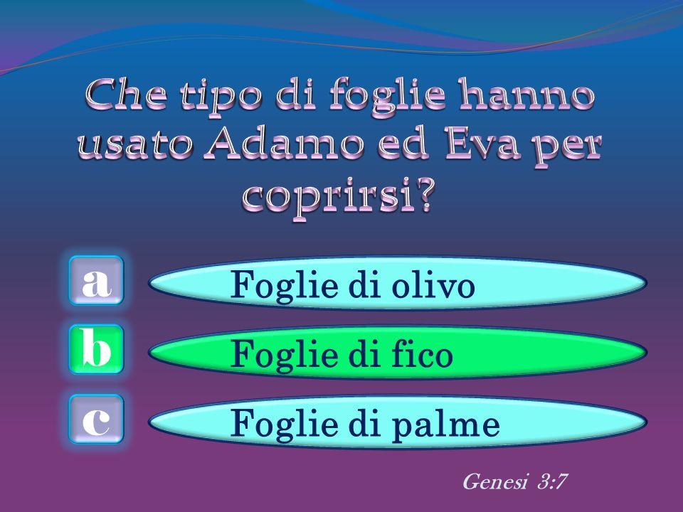 a c b Foglie di olivo Foglie di fico Foglie di palme Genesi 3:7