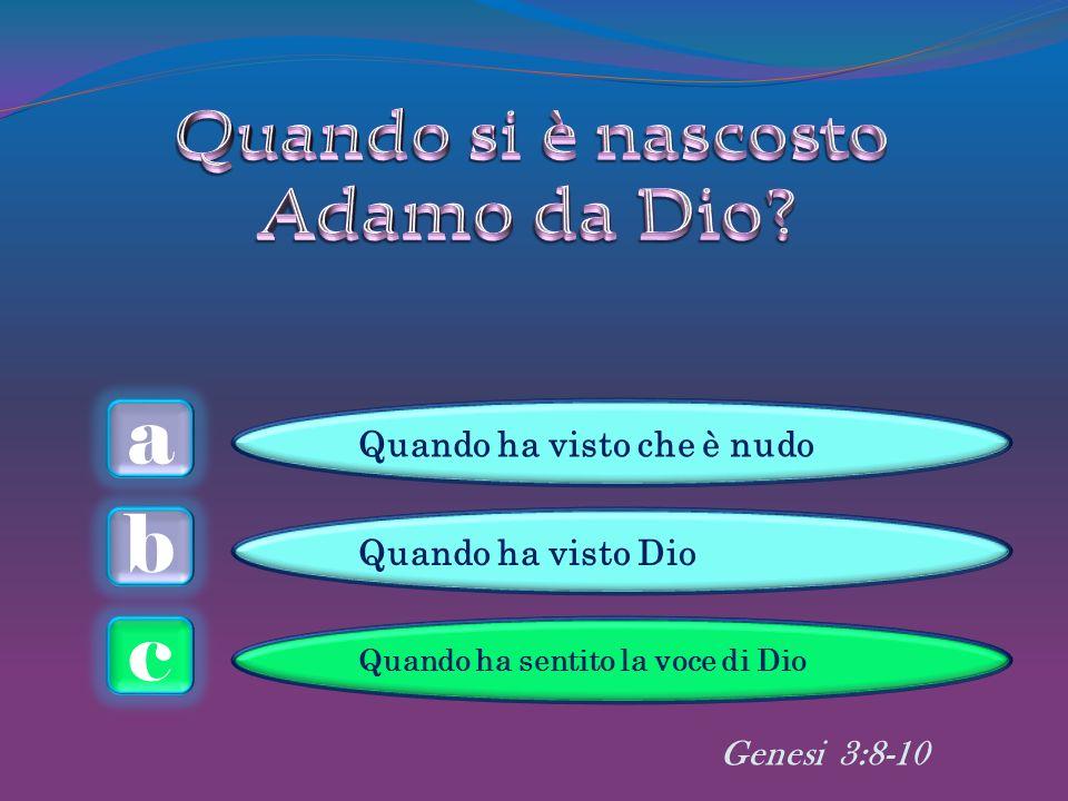 a c b Genesi 3:8-10 Quando ha visto che è nudo Quando ha visto Dio