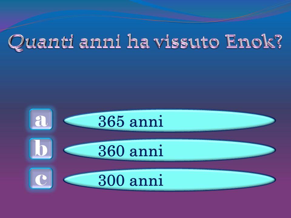 a c b 365 anni 360 anni 300 anni
