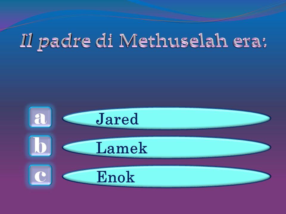 a c b Jared Lamek Enok