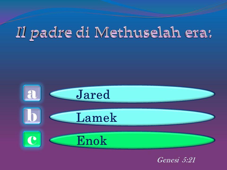 a c b Jared Lamek Enok Genesi 5:21