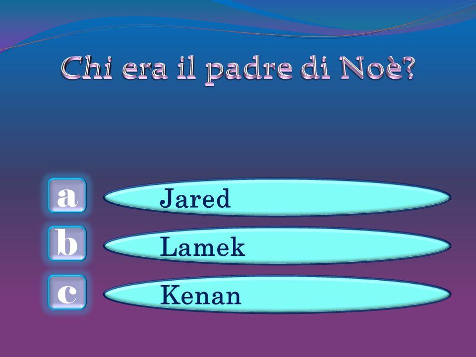 a c b Jared Lamek Kenan