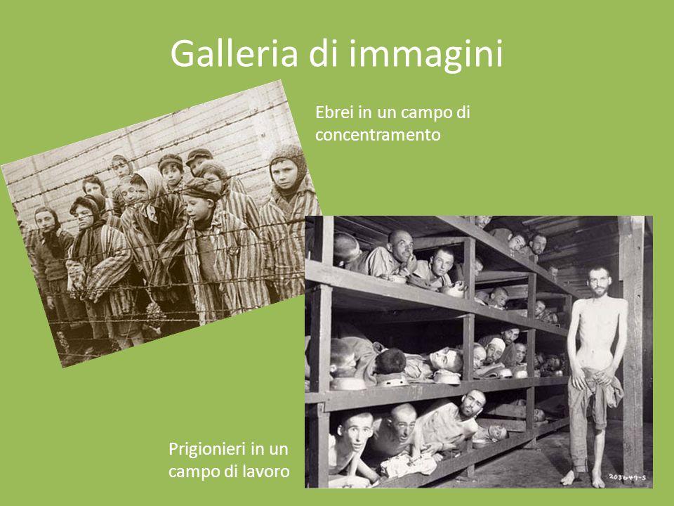 Galleria di immagini Ebrei in un campo di concentramento Prigionieri in un campo di lavoro