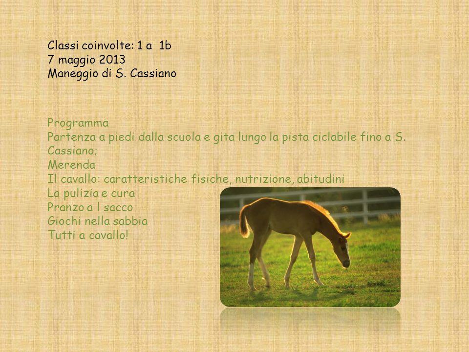 «Giornata a cavallo 2013» classi prime «Segantini» Chiavenna Visita al maneggio dei cavalli di S. Cassiano