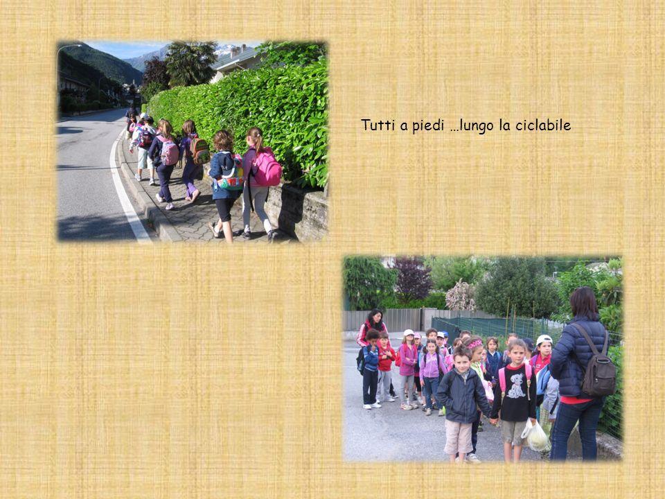 Classi coinvolte: 1 a 1b 7 maggio 2013 Maneggio di S. Cassiano Programma Partenza a piedi dalla scuola e gita lungo la pista ciclabile fino a S. Cassi