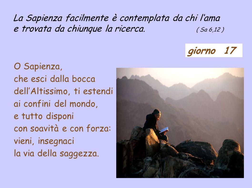 giorno 17 La Sapienza facilmente è contemplata da chi lama e trovata da chiunque la ricerca.