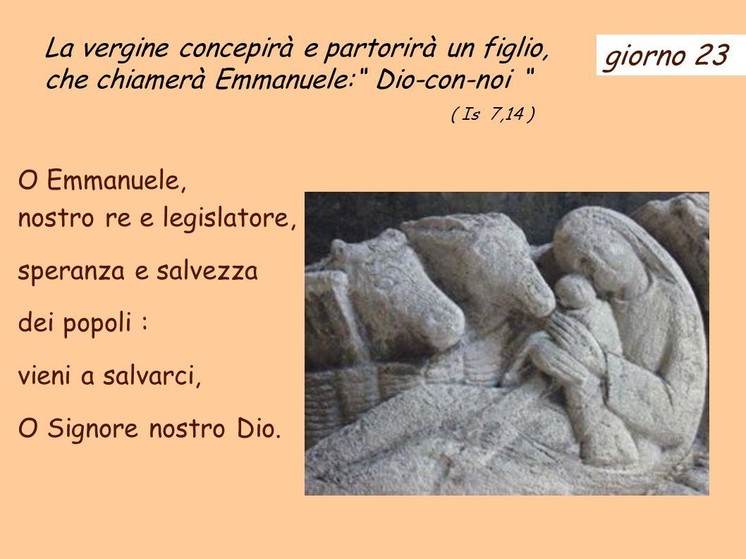 giorno 23 La vergine concepirà e partorirà un figlio, che chiamerà Emmanuele: Dio-con-noi ( Is 7,14 ) O Emmanuele, nostro re e legislatore, speranza e salvezza dei popoli : vieni a salvarci, O Signore nostro Dio.