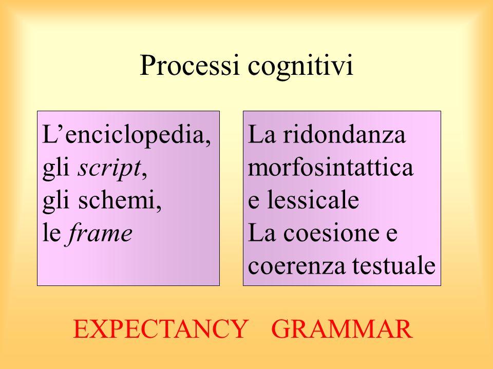 Processi cognitivi Lenciclopedia, gli script, gli schemi, le frame La ridondanza morfosintattica e lessicale La coesione e coerenza testuale EXPECTANCY GRAMMAR