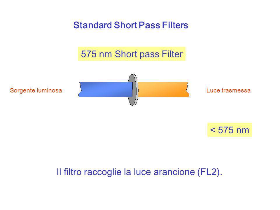 Standard Short Pass Filters 575 nm Short pass Filter Sorgente luminosa Luce trasmessa Il filtro raccoglie la luce arancione (FL2). < 575 nm
