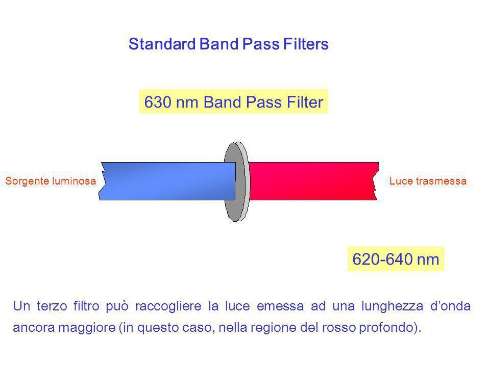 Standard Band Pass Filters 630 nm Band Pass Filter Sorgente luminosa Luce trasmessa 620-640 nm Un terzo filtro può raccogliere la luce emessa ad una l
