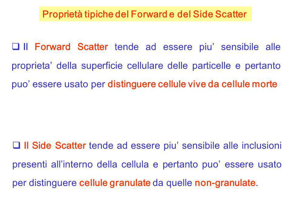 Il Forward Scatter tende ad essere piu sensibile alle proprieta della superficie cellulare delle particelle e pertanto puo essere usato per distinguer