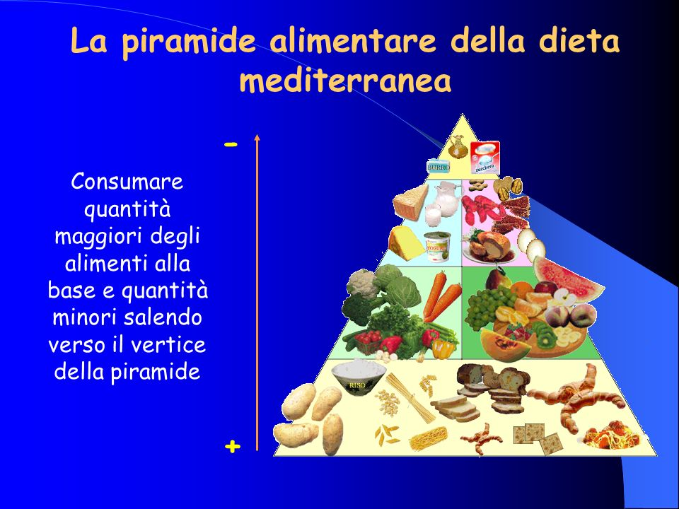La piramide alimentare della dieta mediterranea Consumare quantità maggiori degli alimenti alla base e quantità minori salendo verso il vertice della piramide + -