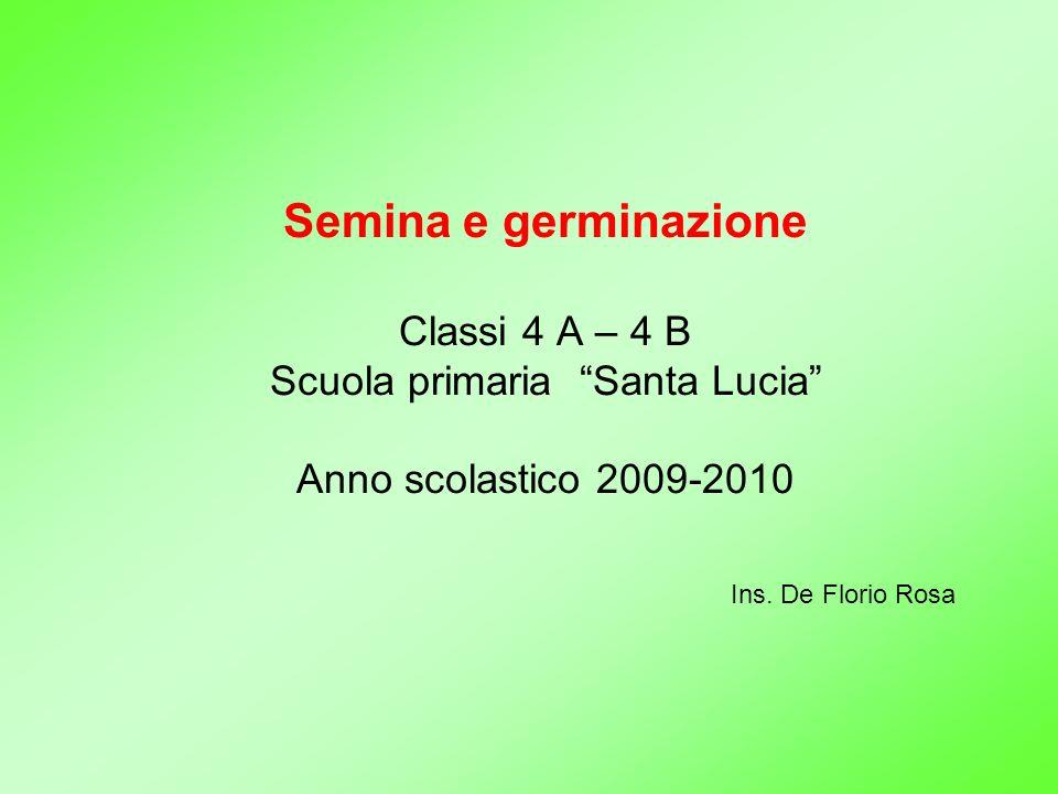 Semina e germinazione Classi 4 A – 4 B Scuola primaria Santa Lucia Anno scolastico 2009-2010 Ins. De Florio Rosa