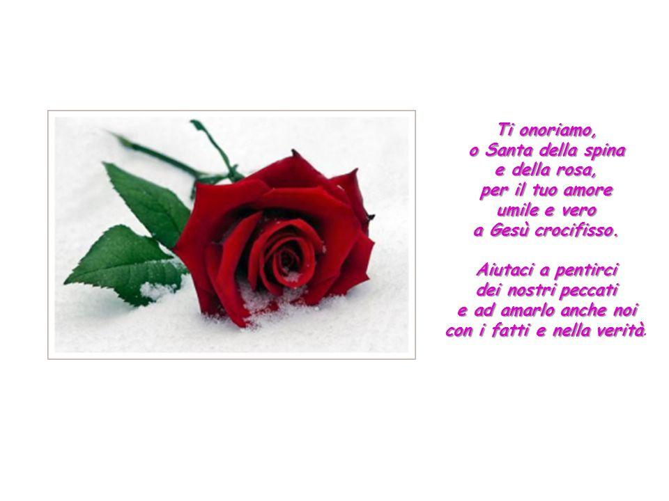 Ti onoriamo, o Santa della spina e della rosa, per il tuo amore umile e vero a Gesù crocifisso.