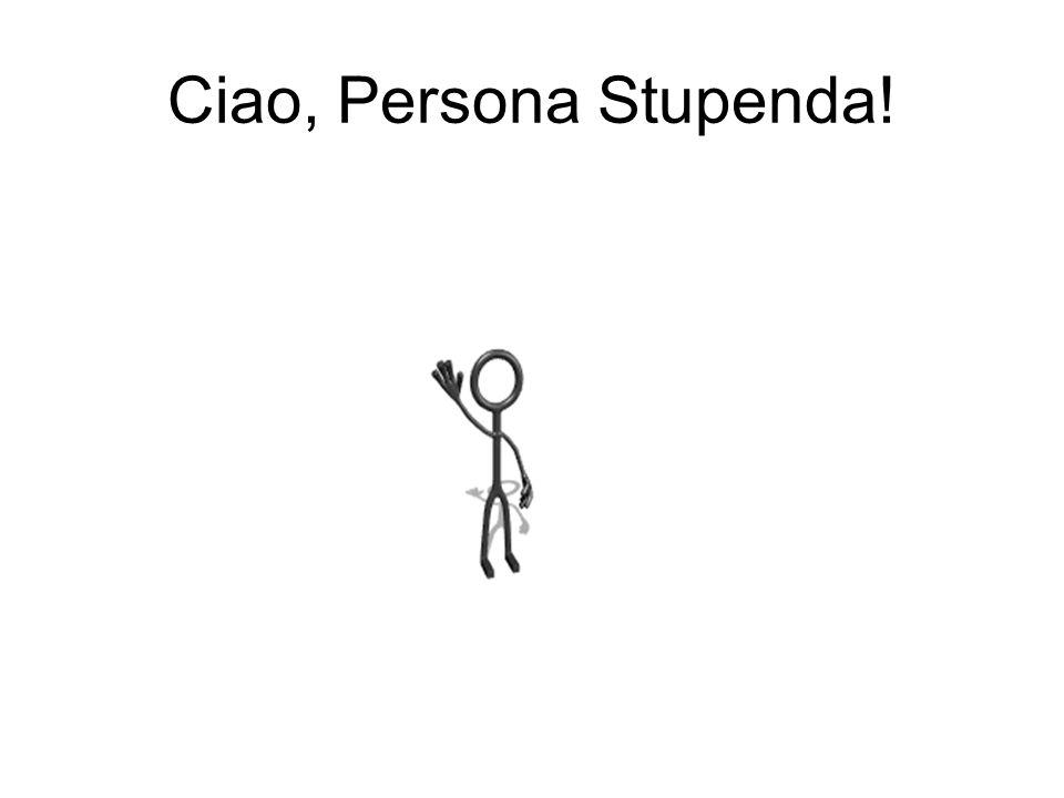 Ciao, Persona Stupenda!