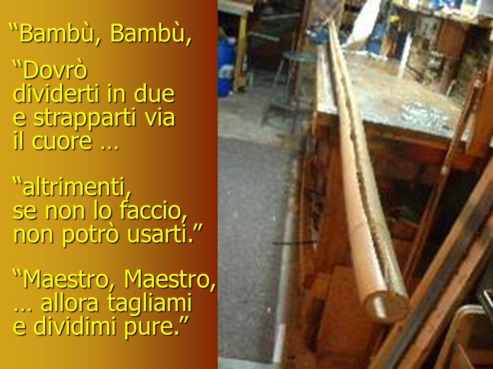 Bambù tremò pensando al suo destino, ma disse sussurrando, Maestro … taglia.