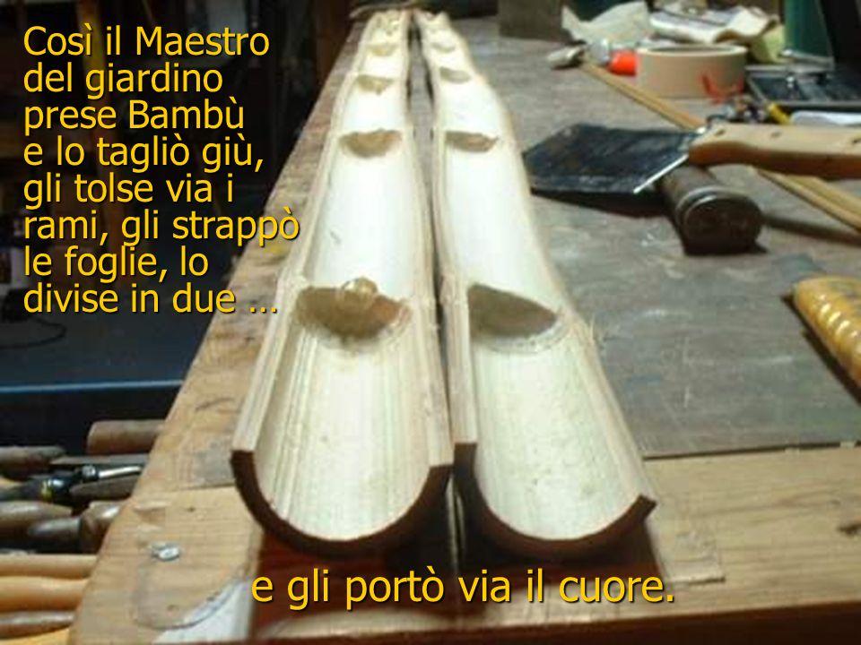 Bambù, Bambù, Maestro, Maestro, … allora tagliami e dividimi pure. Dovrò dividerti in due e strapparti via il cuore … altrimenti, se non lo faccio, no