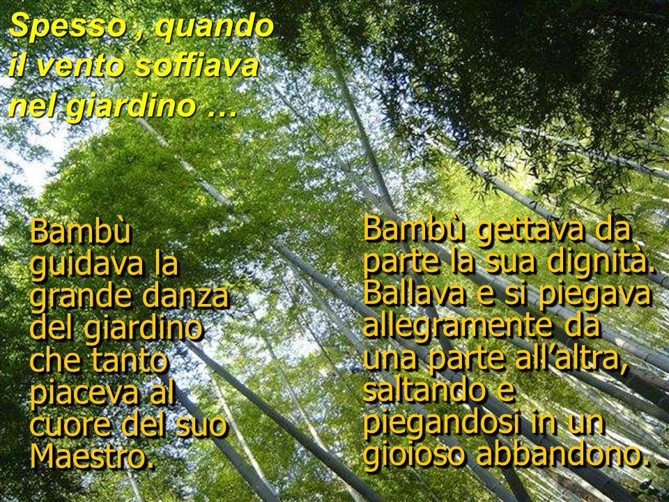 Anno dopo anno Bambù diventava più bello e grazioso, consapevole dellattenzione piacevole del Maestro.