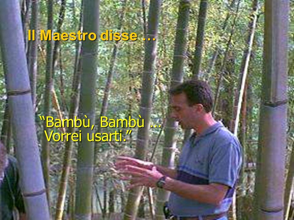 Un giorno … … il Maestro stesso si avvicinò a contemplare il Suo Bambù. Con occhi ripieni di curiosa aspettativa, Bambù piegò il suo capo fino a tocca