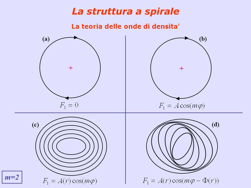 La struttura a spirale La teoria delle onde di densita' + (a) + (b) (c) (d) m=2