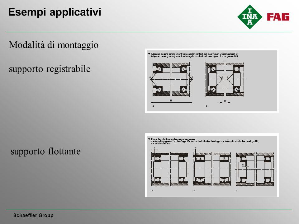 Esempi applicativi Schaeffler Group Modalità di montaggio supporto registrabile supporto flottante