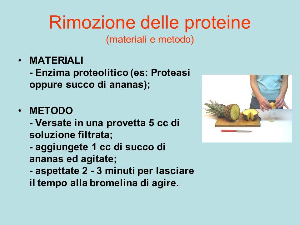 Rimozione delle proteine (materiali e metodo) MATERIALI - Enzima proteolitico (es: Proteasi oppure succo di ananas); METODO - Versate in una provetta
