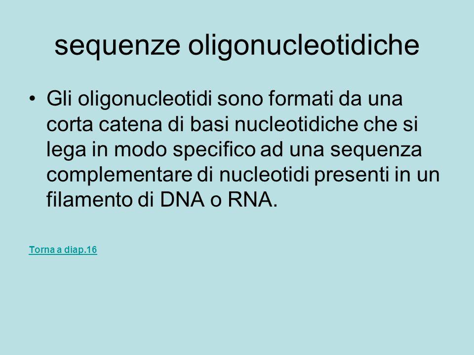 sequenze oligonucleotidiche Gli oligonucleotidi sono formati da una corta catena di basi nucleotidiche che si lega in modo specifico ad una sequenza c