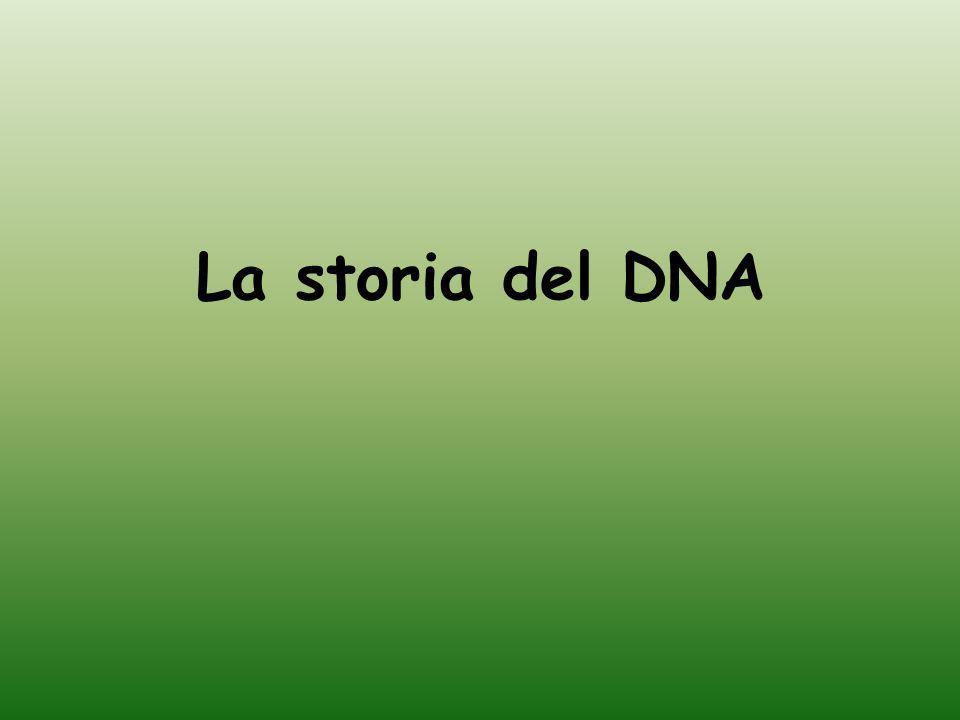 La storia del DNA