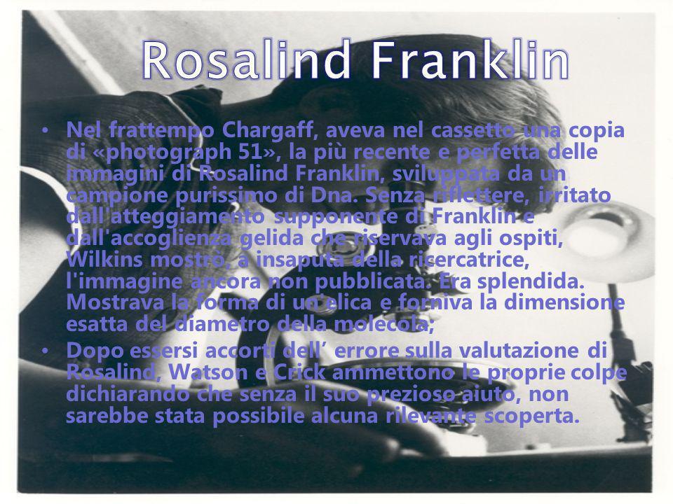 Nel frattempo Chargaff, aveva nel cassetto una copia di «photograph 51», la più recente e perfetta delle immagini di Rosalind Franklin, sviluppata da