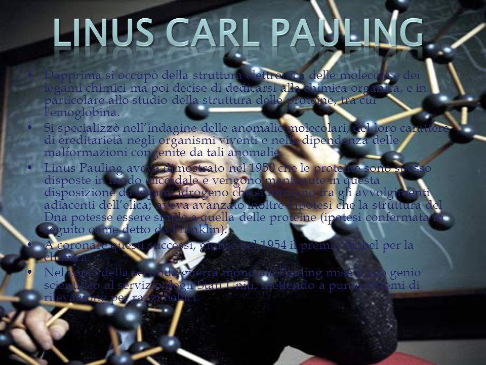 Dapprima si occupò della struttura elettronica delle molecole e dei legami chimici ma poi decise di dedicarsi alla chimica organica, e in particolare