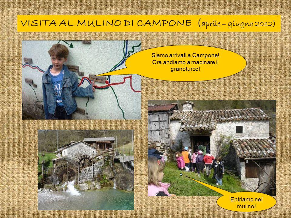 VISITA AL MULINO DI CAMPONE ( aprile – giugno 2012) Siamo arrivati a Campone.