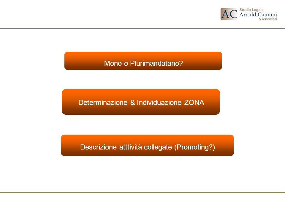 Determinazione & Individuazione ZONA Mono o Plurimandatario? Descrizione atttività collegate (Promoting?)