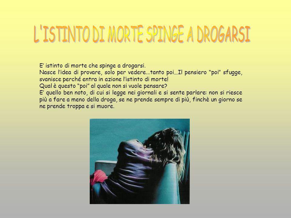 La comunità è stata fondata da Muccioli nelle vicinanze di Rimini a San Patrignano.