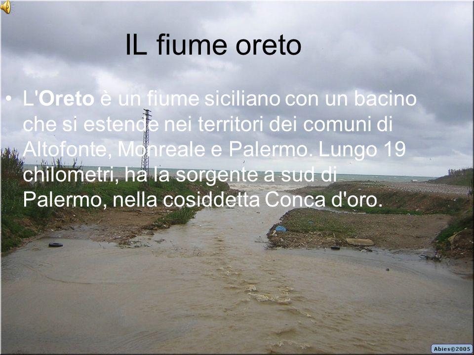 IL fiume oreto L'Oreto è un fiume siciliano con un bacino che si estende nei territori dei comuni di Altofonte, Monreale e Palermo. Lungo 19 chilometr