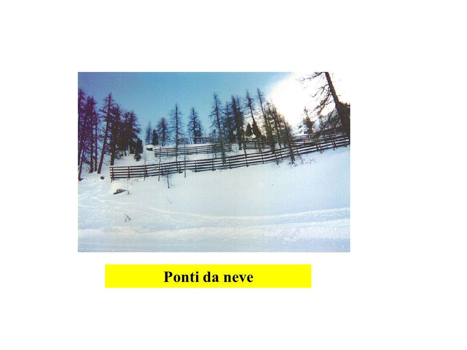 Ponti da neve