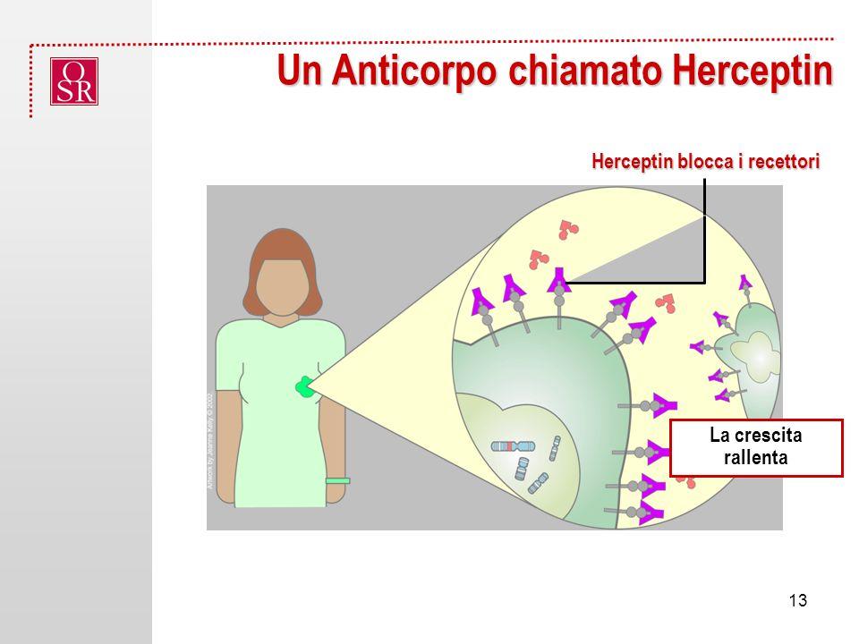 Un Anticorpo chiamato Herceptin La crescita rallenta Herceptin blocca i recettori 13