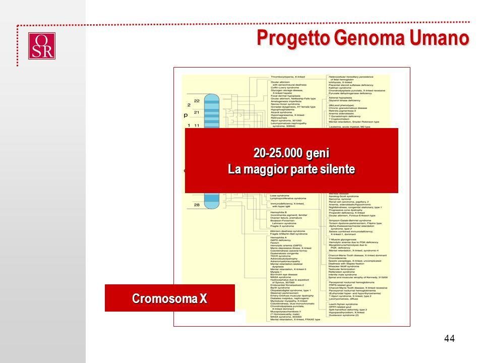 Progetto Genoma Umano Cromosoma X 20-25.000 geni La maggior parte silente 44