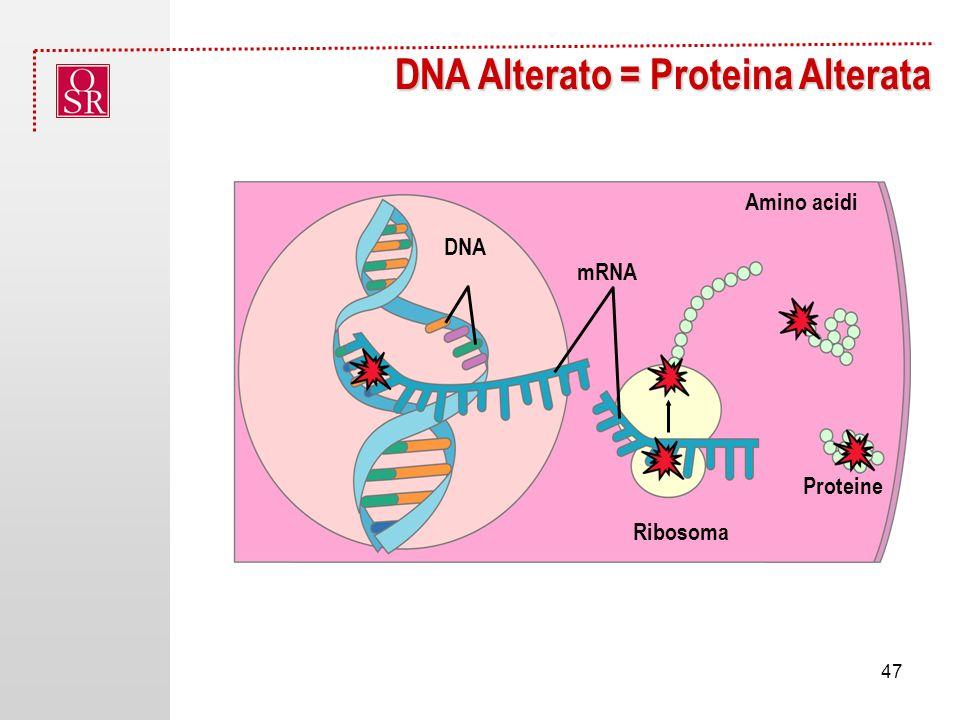 DNA Alterato = Proteina Alterata NucleusDNA Gene Proteine Amino acidi Ribosoma DNA mRNA 47