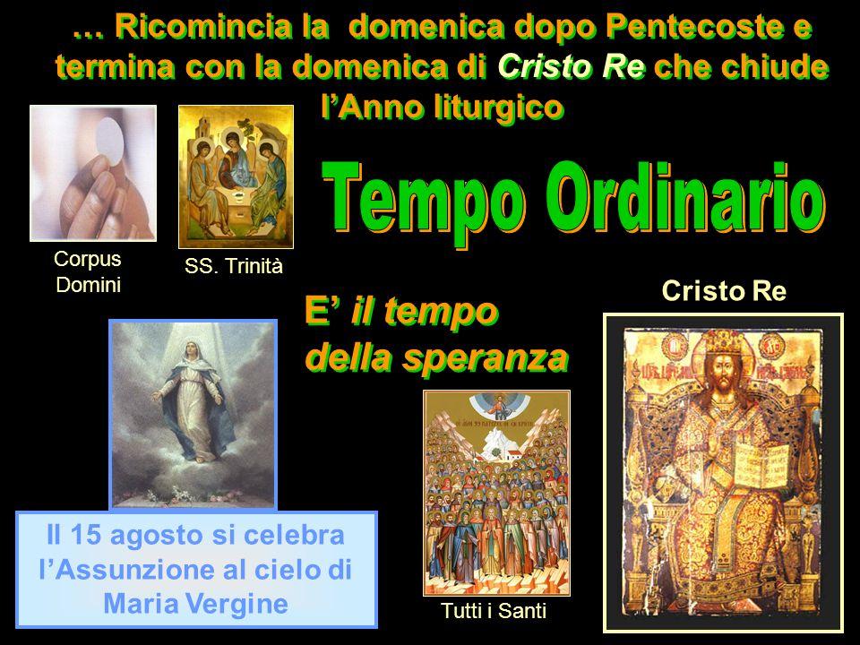 … Ricomincia la domenica dopo Pentecoste e termina con la domenica di Cristo Re che chiude lAnno liturgico Il 15 agosto si celebra lAssunzione al ciel