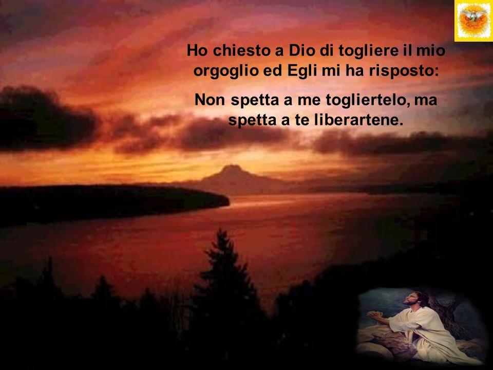 Ho chiesto a Dio di togliere il mio orgoglio ed Egli mi ha risposto: Non spetta a me togliertelo, ma spetta a te liberartene.
