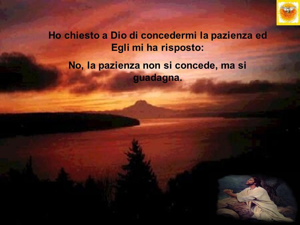 Ho chiesto a Dio di concedermi la pazienza ed Egli mi ha risposto: No, la pazienza non si concede, ma si guadagna.