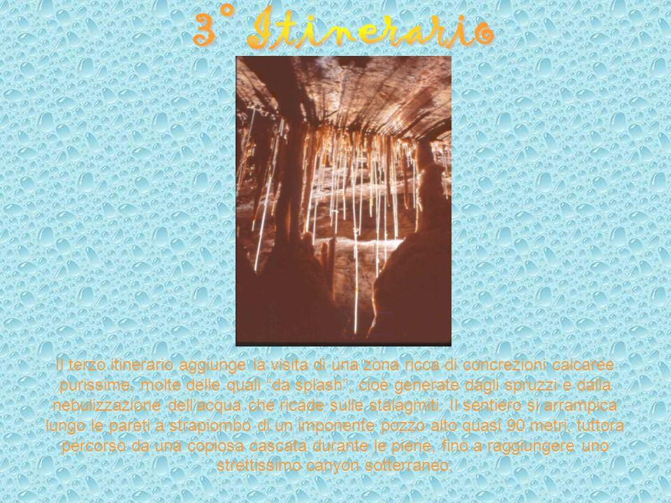 Il terzo itinerario aggiunge la visita di una zona ricca di concrezioni calcaree purissime, molte delle quali da splash, cioè generate dagli spruzzi e