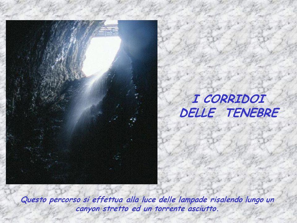 I CORRIDOI DELLE TENEBRE Questo percorso si effettua alla luce delle lampade risalendo lungo un canyon stretto ed un torrente asciutto.