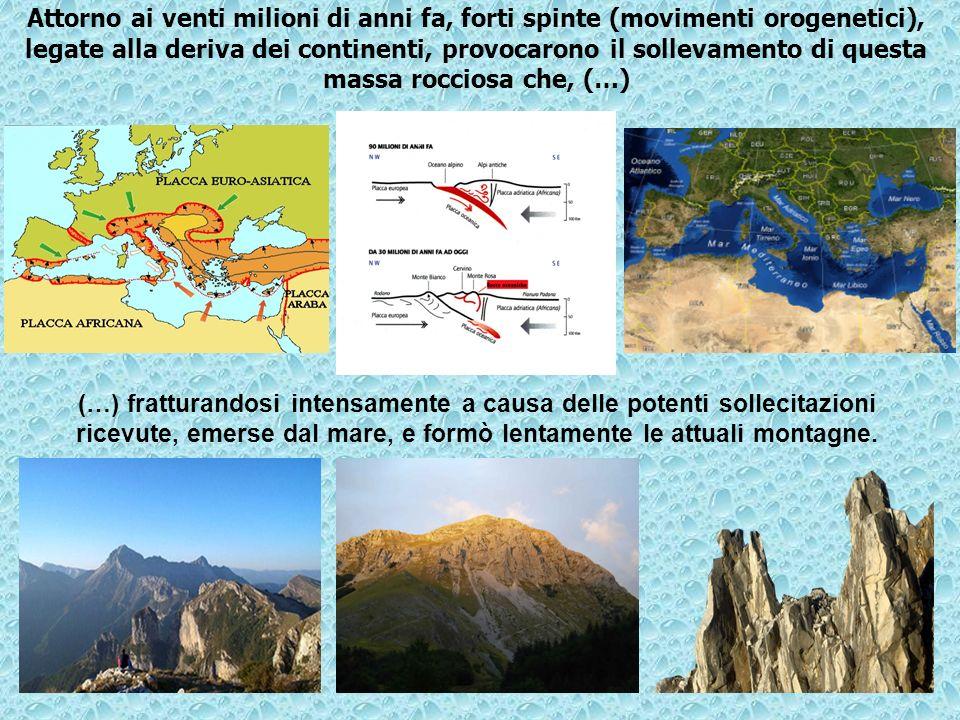 Attorno ai venti milioni di anni fa, forti spinte (movimenti orogenetici), legate alla deriva dei continenti, provocarono il sollevamento di questa ma