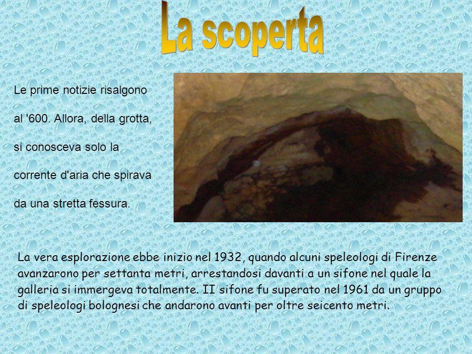 La vera esplorazione ebbe inizio nel 1932, quando alcuni speleologi di Firenze avanzarono per settanta metri, arrestandosi davanti a un sifone nel qua