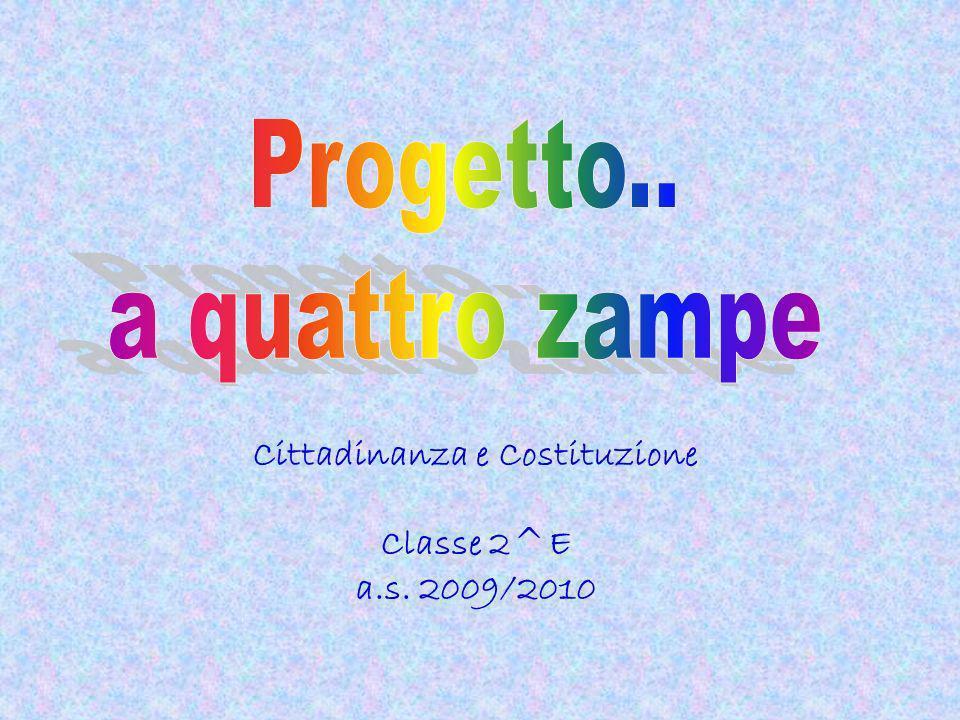 Cittadinanza e Costituzione Classe 2^E a.s. 2009/2010